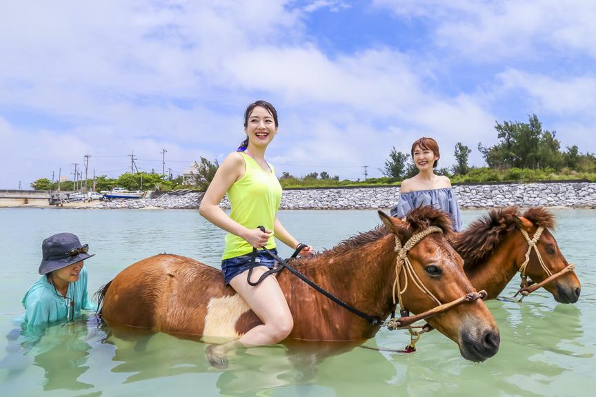〈久米島馬牧場〉馬遊び