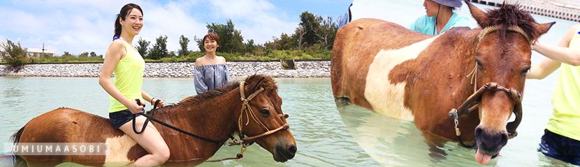 久米島馬牧場の「海馬遊び」