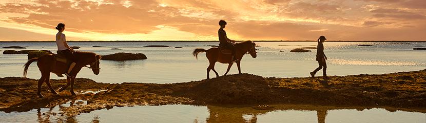 特別な乗馬体験〈サンセット乗馬〉