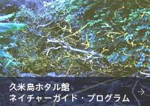 久米島ホタル館ネイチャーガイド・プログラム
