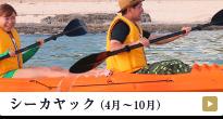 シーカヤック(4月〜10月)